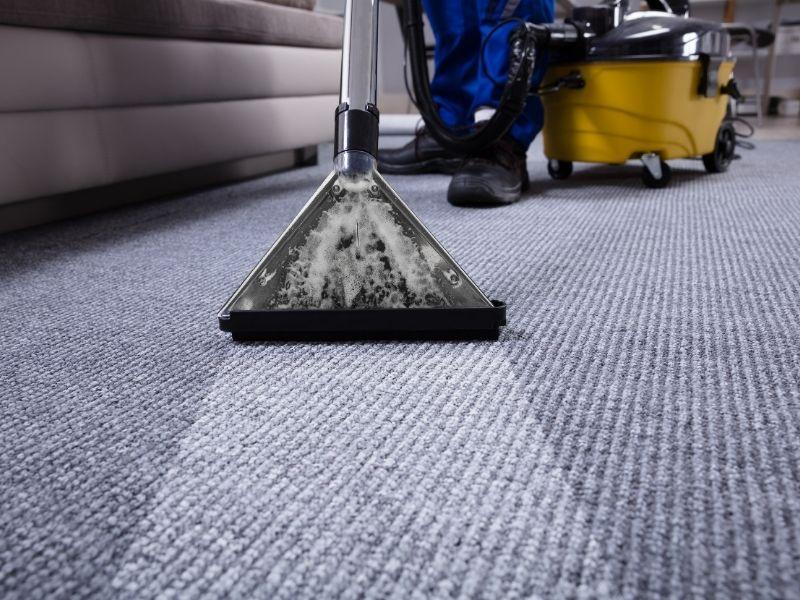 Profesjonalne czyszczenie dywanów krok po kroku